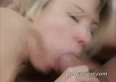 Drenched Cougar